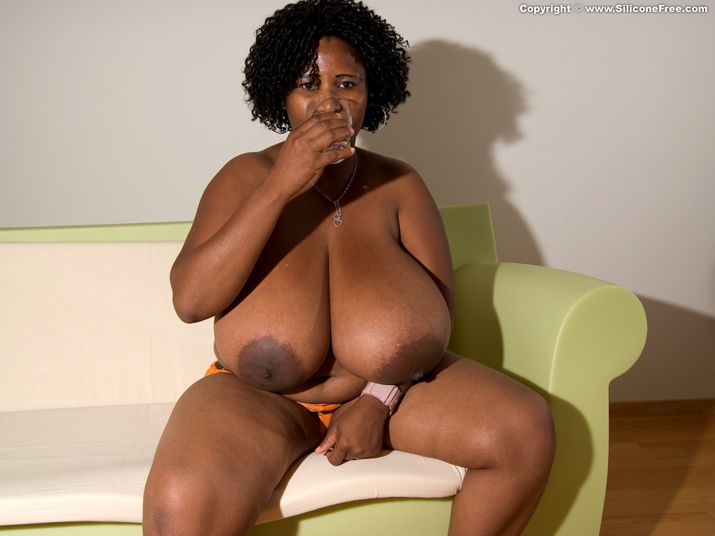 Huge tit ebony bbw